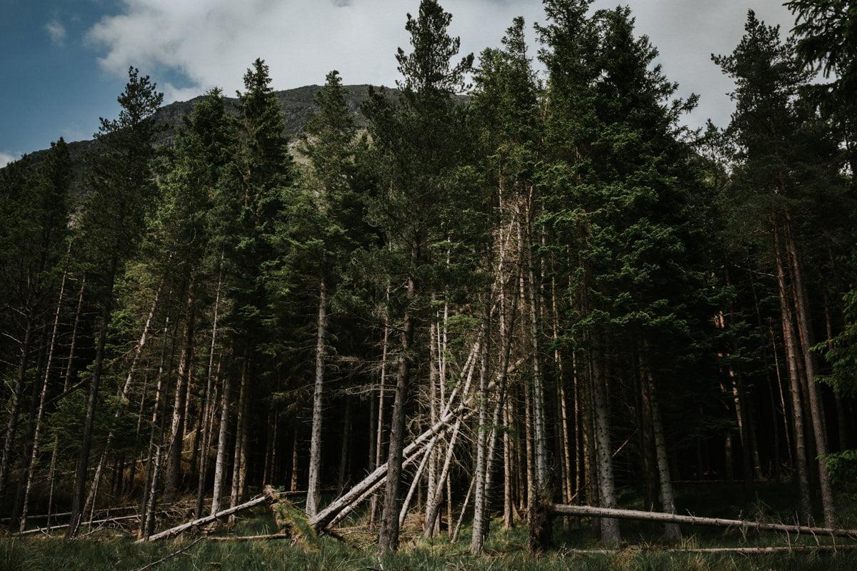 Glen Doll adventurous couples photo session - Take me to the mountains