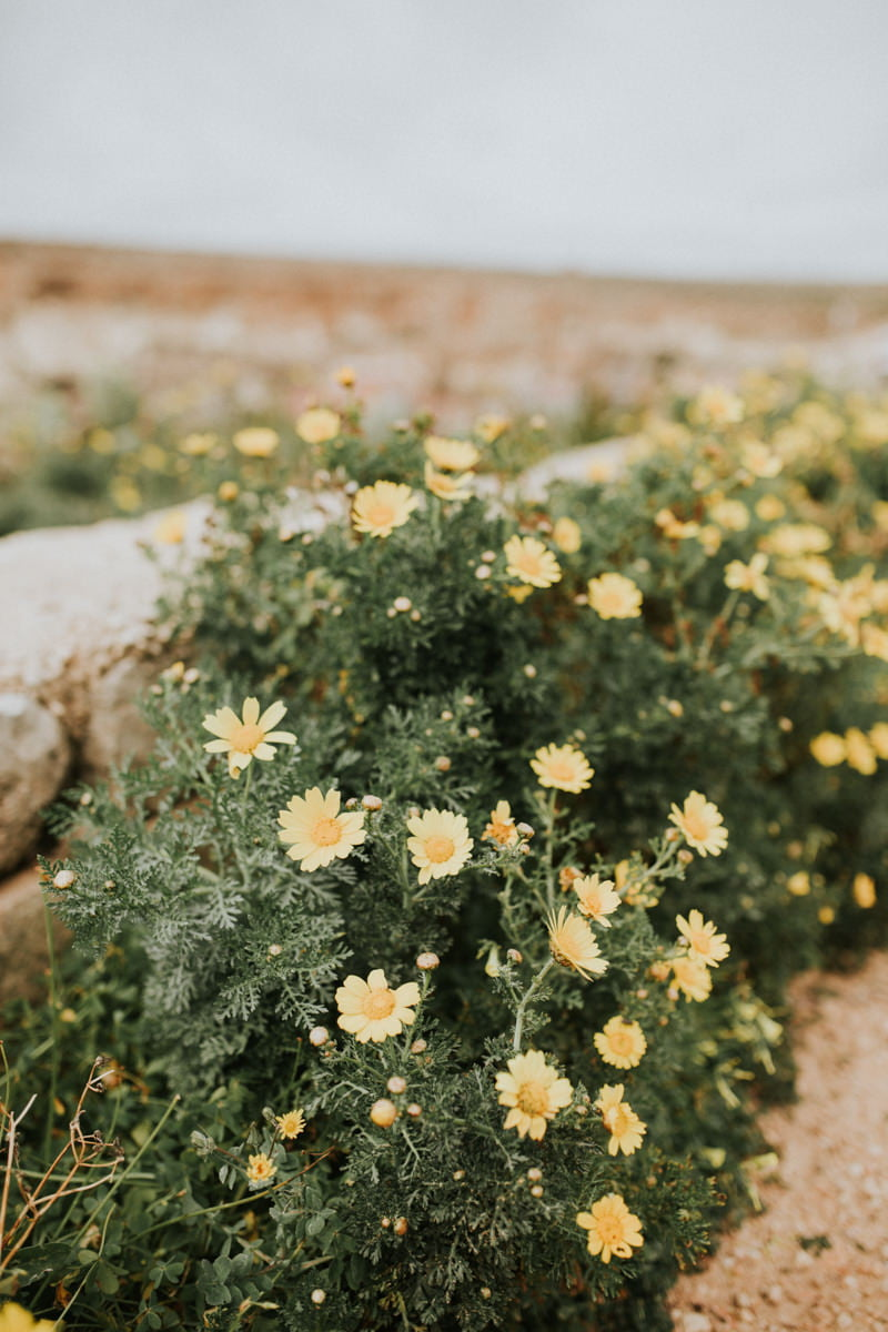 Malta, Gozo, Comino 26