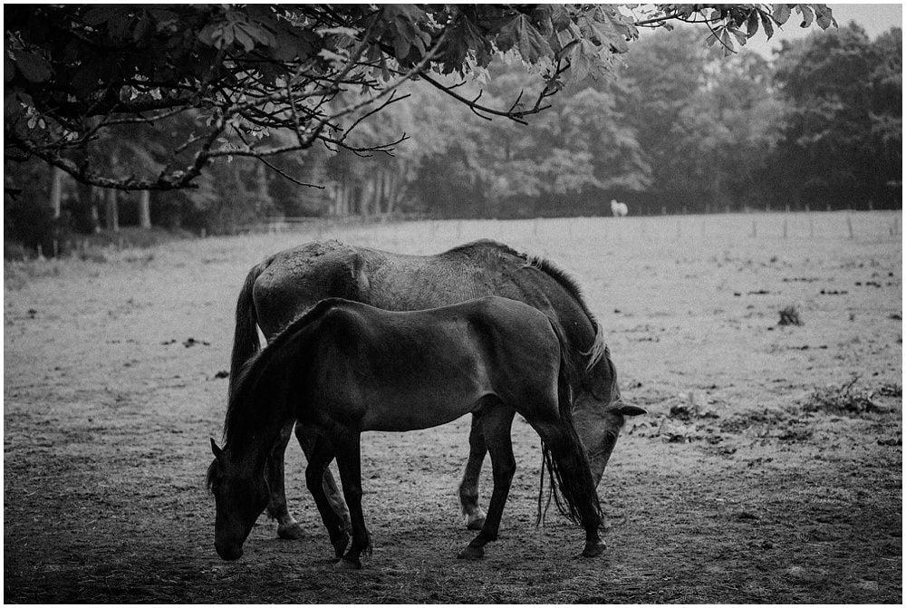 Adventurous photoshoot in Tentsmuir Reserve, Tentsmuir Forest, by Bernadeta Kupiec