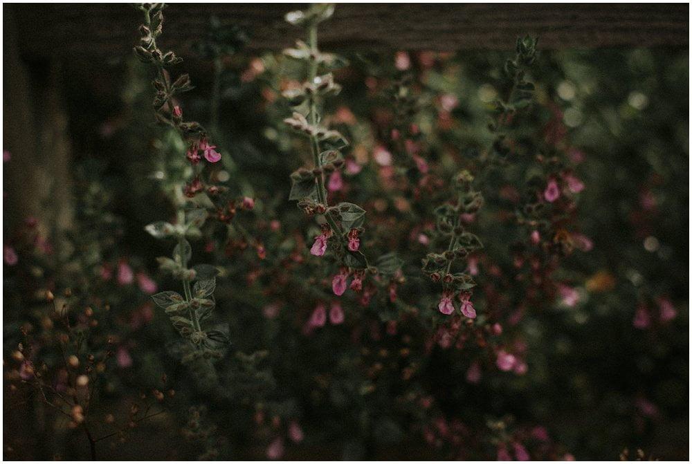 Niki Davaki, Edinburgh Fashion Photography, Dunbars Close Garden Edinburgh, Edinburgh Wedding Photographer