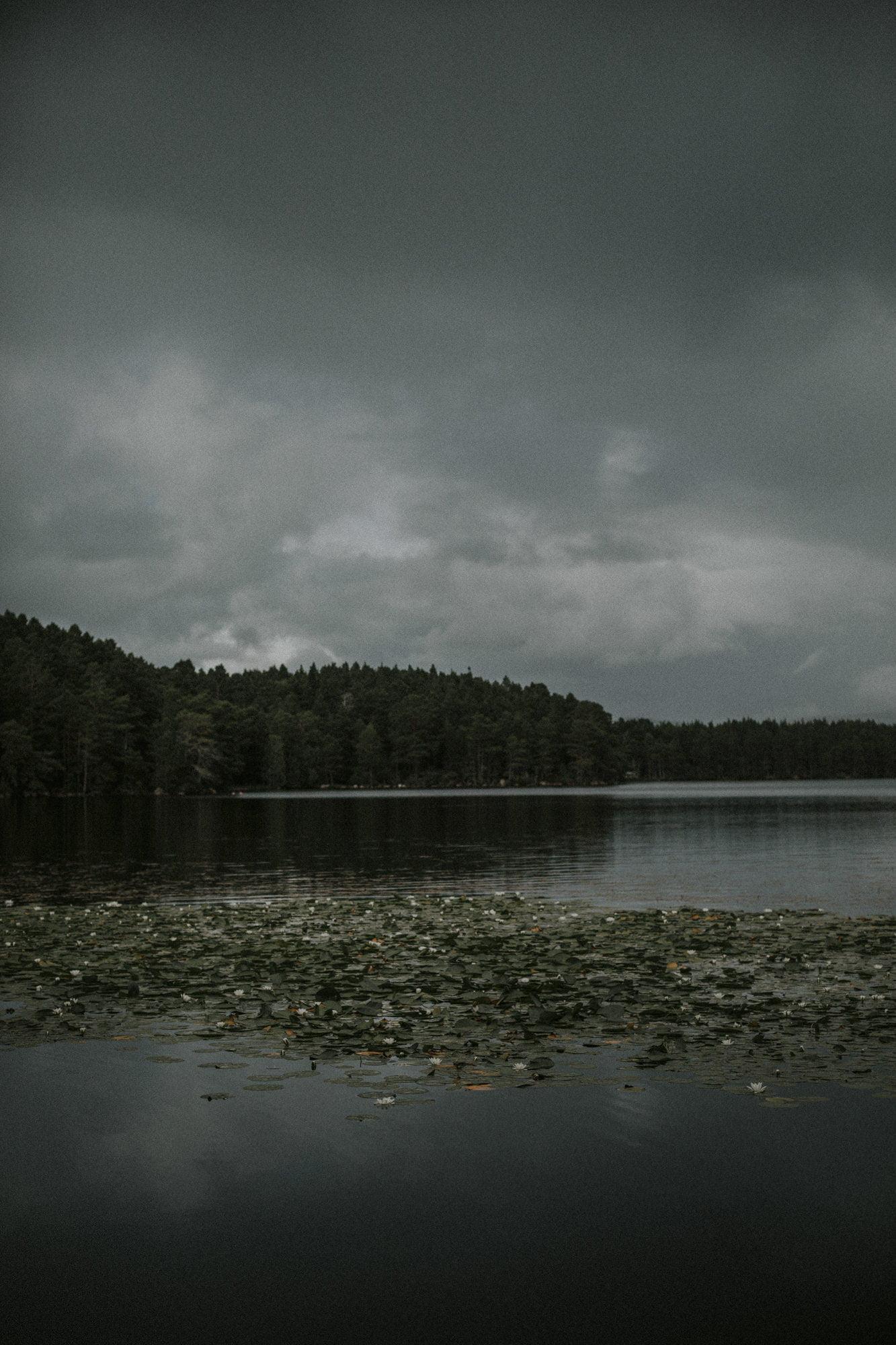 Loch Garten elopement, Aviemore elopement, Cairngorms elopement in the Scottish Highlands Lochs