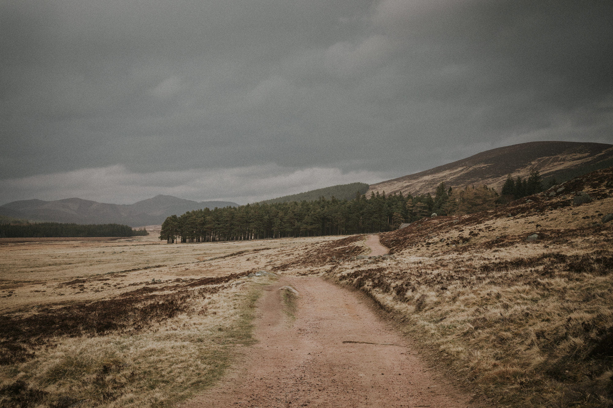 Loch Ullapie elopement, Aviemore elopement, Cairngorms elopement in the Scottish Highlands Guide Lochs