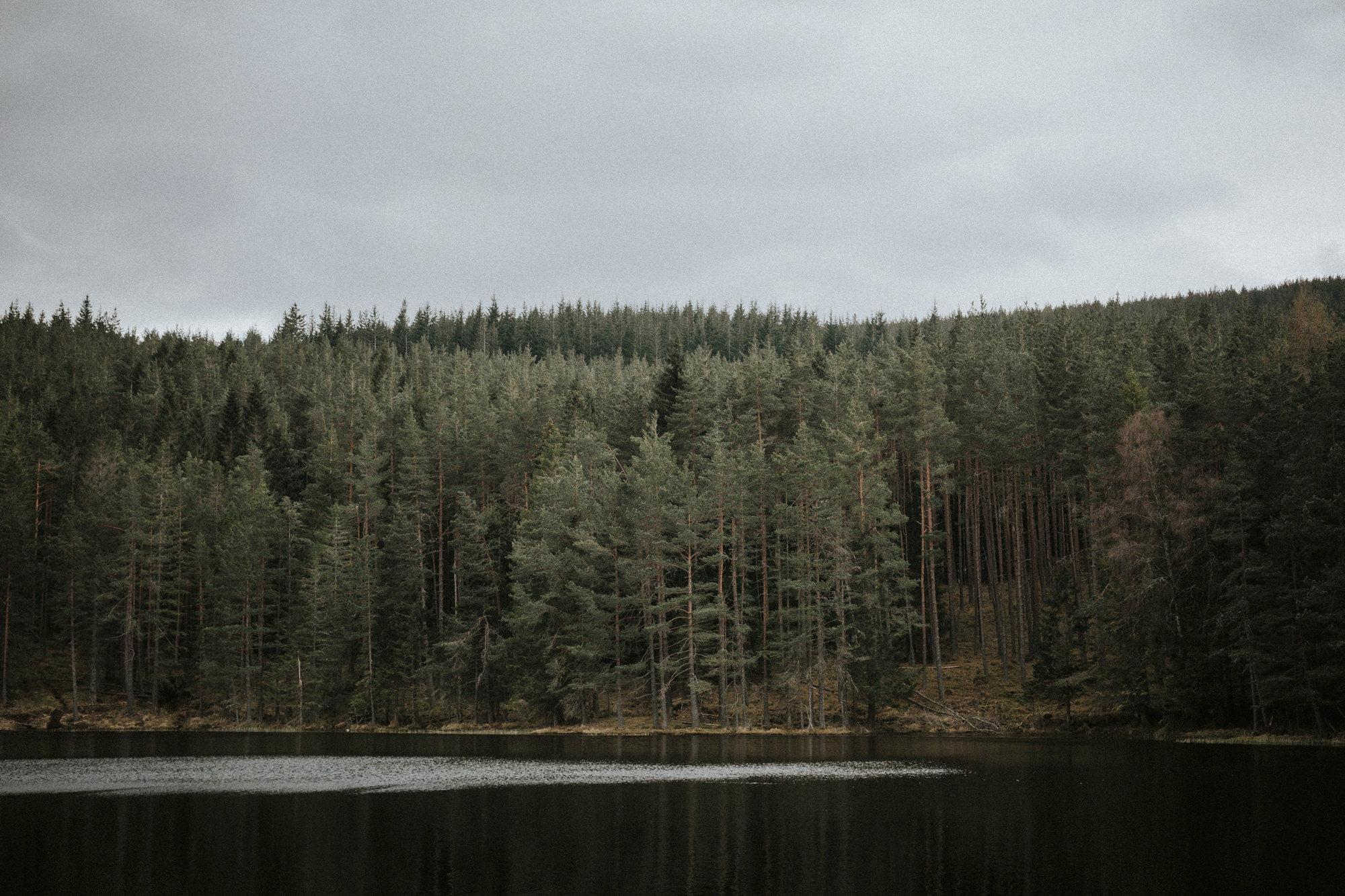 Loch Ullachie elopement, Aviemore elopement, Cairngorms elopement in the Scottish Highlands Lochs